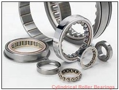1.75 Inch | 44.45 Millimeter x 2.835 Inch | 72 Millimeter x 1.188 Inch | 30.175 Millimeter  ROLLWAY BEARING B-207-19  Cylindrical Roller Bearings