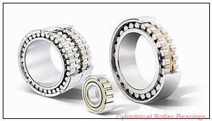 2.165 Inch   55 Millimeter x 4.724 Inch   120 Millimeter x 1.142 Inch   29 Millimeter  NACHI NU311MY C3  Cylindrical Roller Bearings