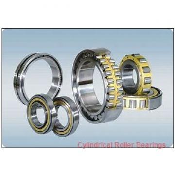 2.953 Inch | 75 Millimeter x 5.118 Inch | 130 Millimeter x 0.984 Inch | 25 Millimeter  ROLLWAY BEARING E-1215-B  Cylindrical Roller Bearings