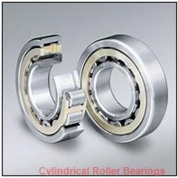 1.969 Inch | 50 Millimeter x 4.331 Inch | 110 Millimeter x 1.063 Inch | 27 Millimeter  NACHI NU310MY C3 Cylindrical Roller Bearings