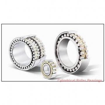 2.559 Inch | 65 Millimeter x 5.512 Inch | 140 Millimeter x 1.299 Inch | 33 Millimeter  NACHI NU313  Cylindrical Roller Bearings