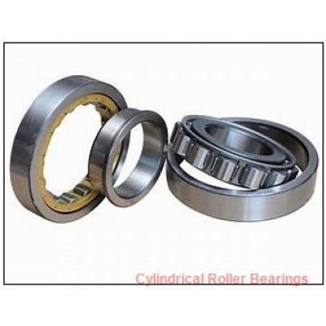 2.559 Inch | 65 Millimeter x 4.724 Inch | 120 Millimeter x 0.906 Inch | 23 Millimeter  ROLLWAY BEARING U-1213-B  Cylindrical Roller Bearings