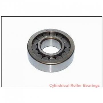 2.559 Inch   65 Millimeter x 5.512 Inch   140 Millimeter x 1.299 Inch   33 Millimeter  ROLLWAY BEARING U-1313-J  Cylindrical Roller Bearings
