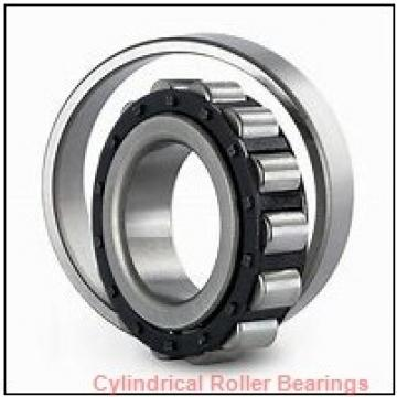 3.5 Inch | 88.9 Millimeter x 4.5 Inch | 114.3 Millimeter x 2.625 Inch | 66.675 Millimeter  ROLLWAY BEARING WS-215-42  Cylindrical Roller Bearings