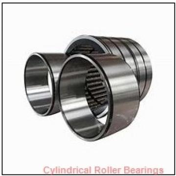 0.984 Inch | 25 Millimeter x 2.047 Inch | 52 Millimeter x 0.591 Inch | 15 Millimeter  ROLLWAY BEARING U-1205-B  Cylindrical Roller Bearings